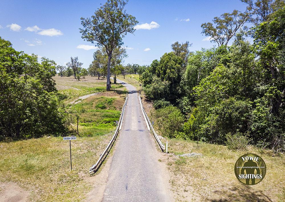 Calgoa Creek Yowie Sighting QLD 2021