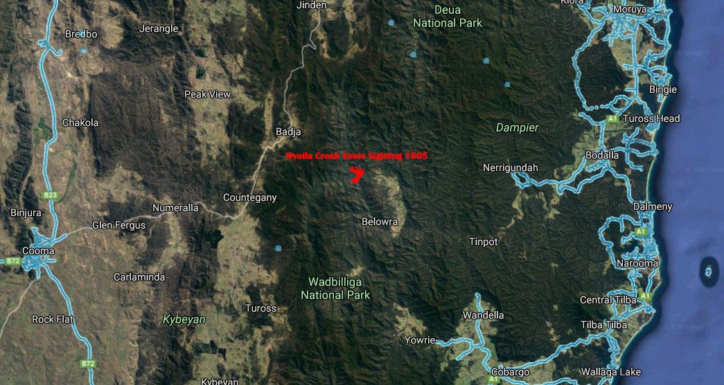 Wyoila Creek NSW Yowie Sighting May 1905